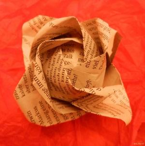 rosa paper_