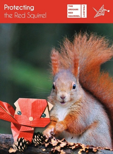 Origami Red Squirrel Project